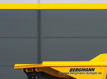 Bergmann 2030 Logo